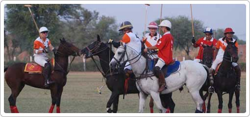Polo in Rajasthan